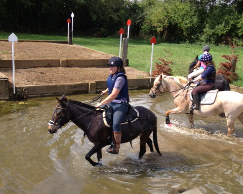 Mule at the Water jump
