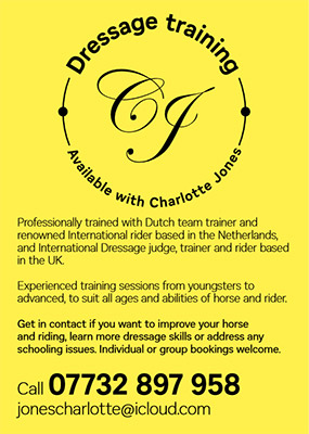 dressage_advert